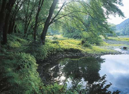 35685_all_008_01-river